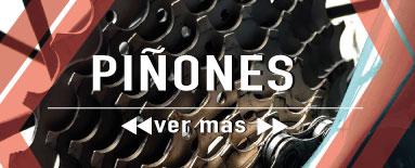 Piñones de bicicleta